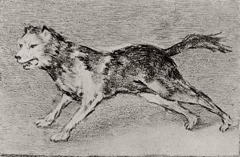 Франсиско Гойя. Лающая собака