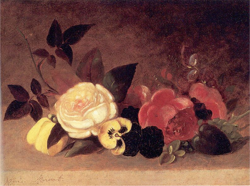 Эвелина Гора. Розы