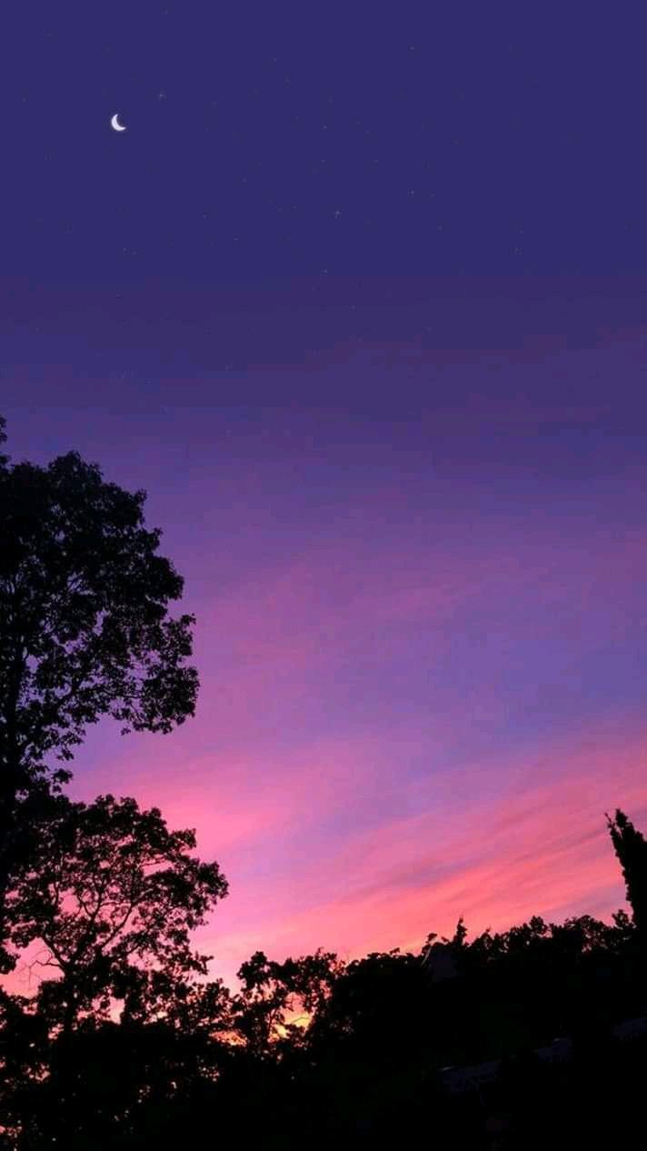 William Charlie. Purple evening sky