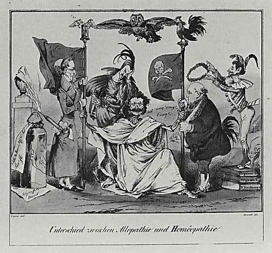 Адольф фон Менцель. Сатира на спор Аллопатии с Гомеопатией