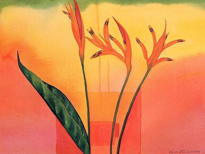 Сара Стил. Цветы