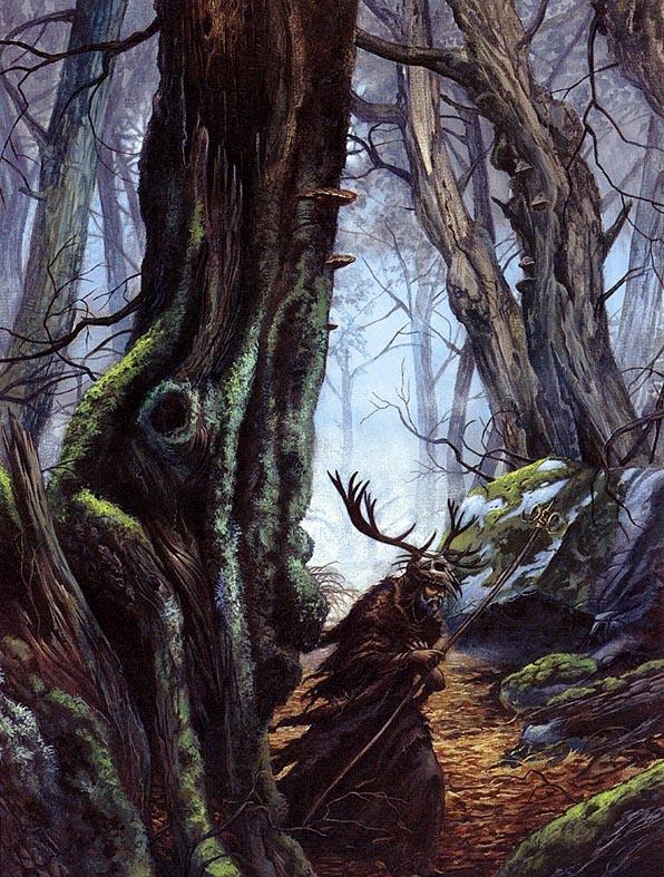 Didier Graffet. Forest