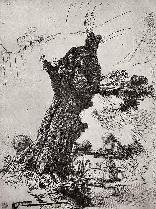 Рембрандт Ван Рейн. Святой Иероним под ивой