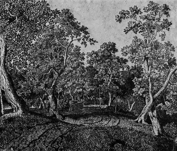 Херкюлес Питерс Сегерс. Деревенская улица с деревьями и зданиями