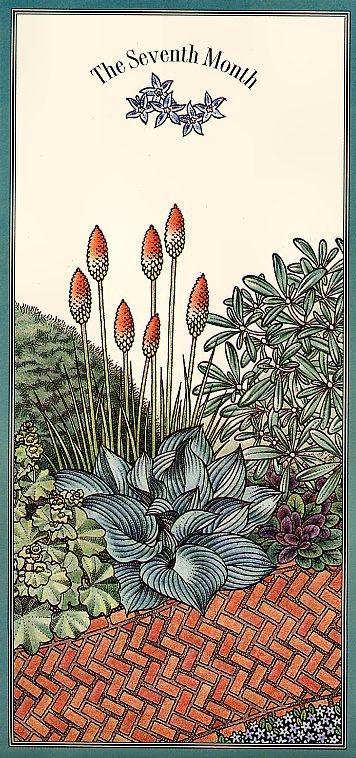 Цветочный календарь. Июль
