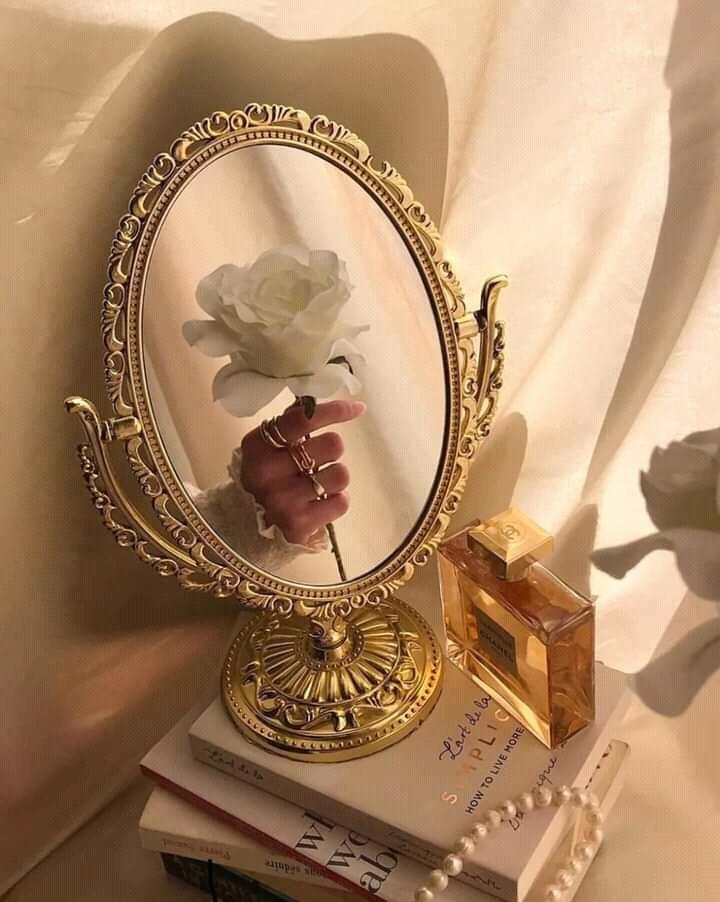 Nguyenhuusonvpbq. White Rose
