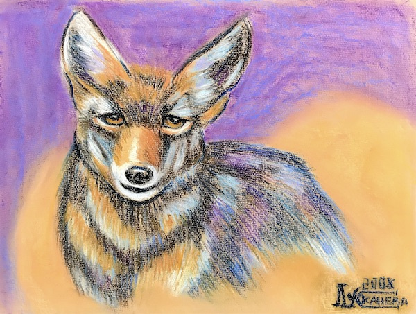 Larissa Lukaneva. Coyote