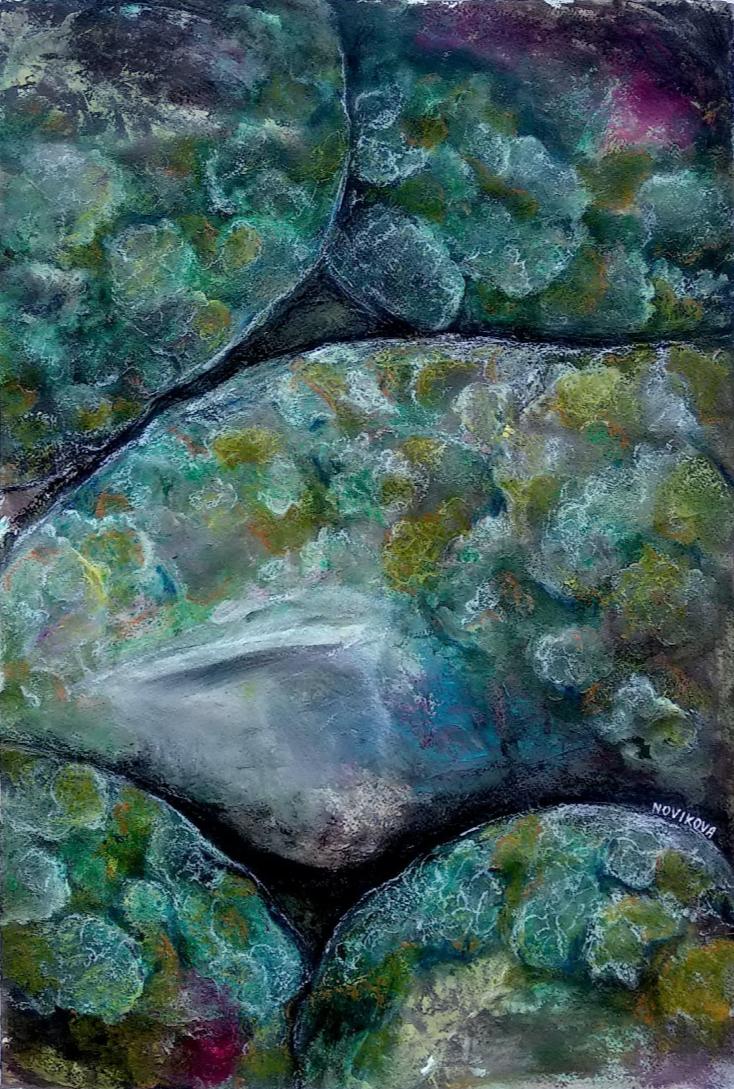 Anna V Novikova. Moss & Stones in the Wet Forest