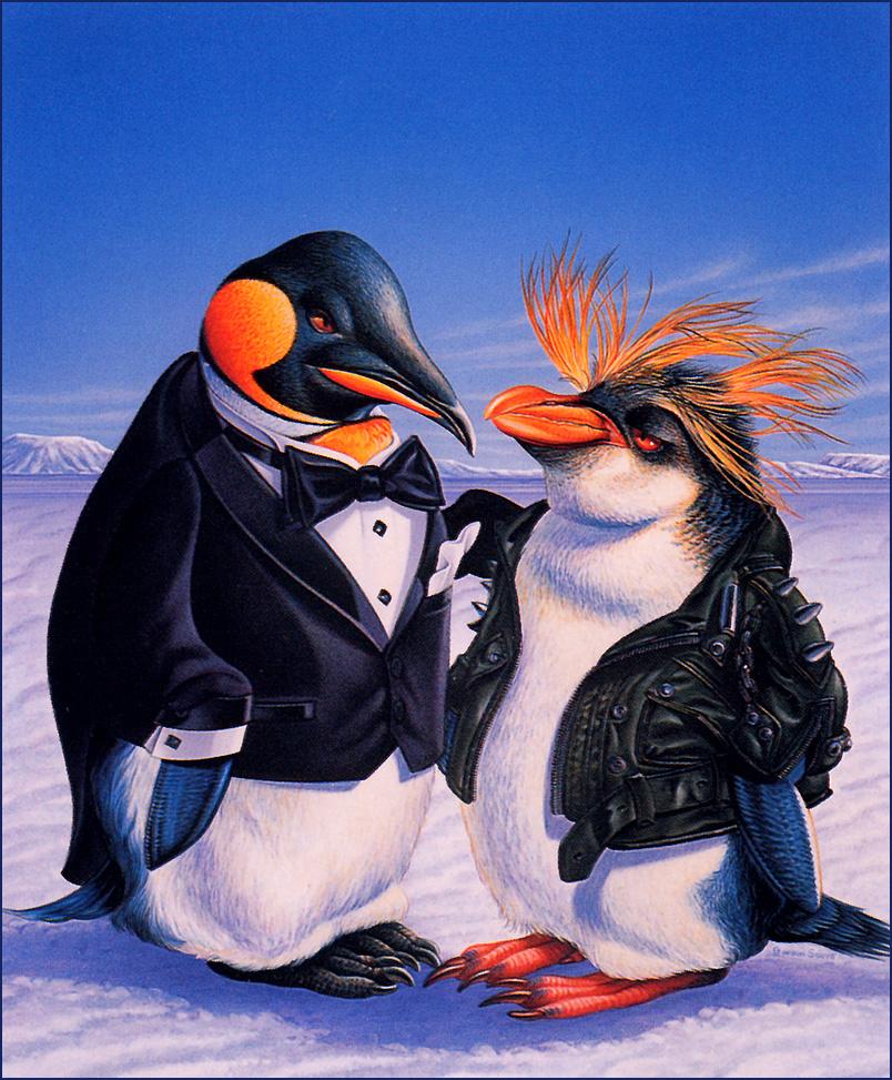 Gordon Owls. Penguins