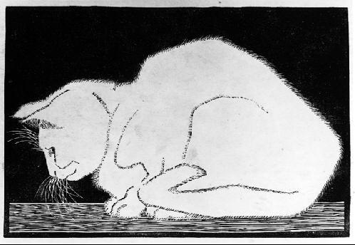 Мауриц Корнелис Эшер. Кошка