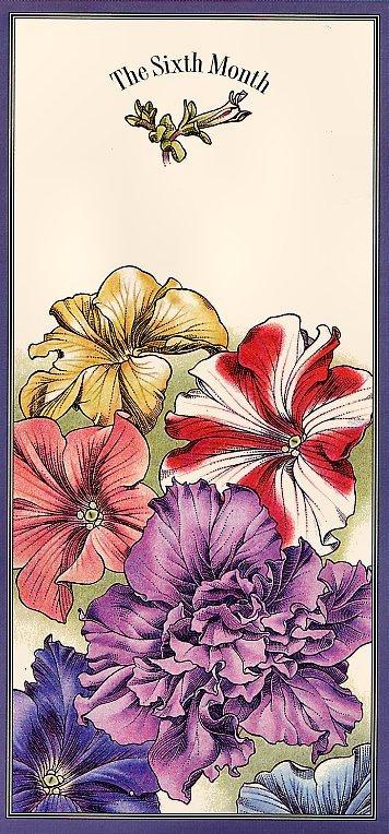 Офа. Цветочный календарь. Июнь