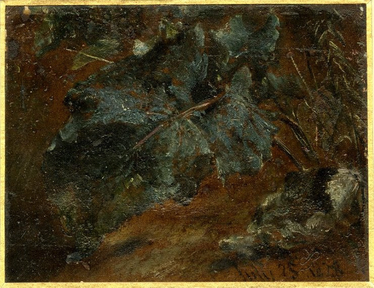 John Constable. The leaves of sorrel. Sketch