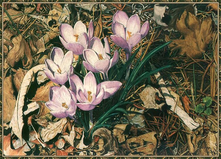 Алма Паркс. Нежные цветы