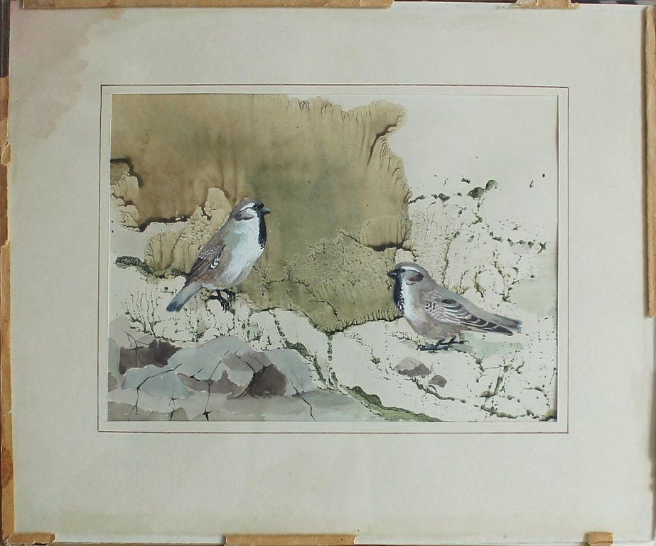 Анатолий Владимирович Трескин. Mongolian Earthen Sparrow