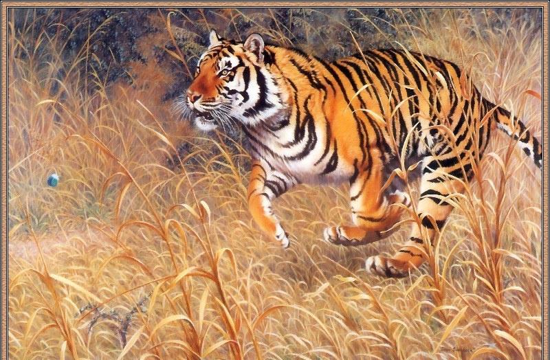 Джоан Шаррок. Бенгальский тигр и павлины. Фрагмент2