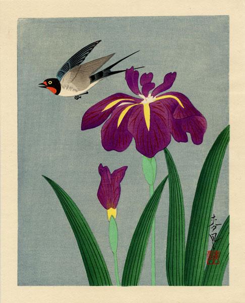 Baku Ono. Bird and flower