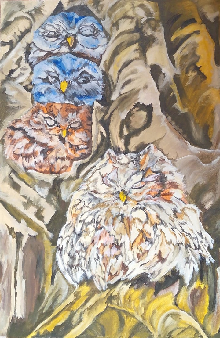 Tatyana Timakova. Sleeping owls