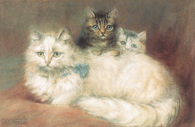 Мод Хипс. Персидские коты