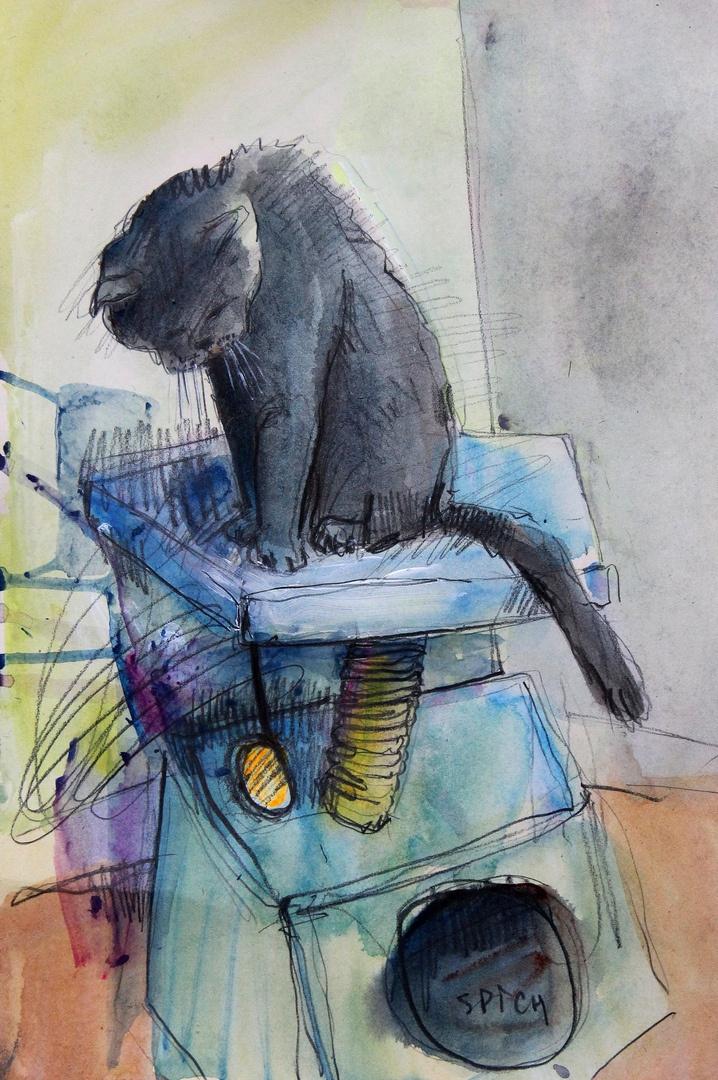 Ilya Pavlovich Spichenkov. Cat