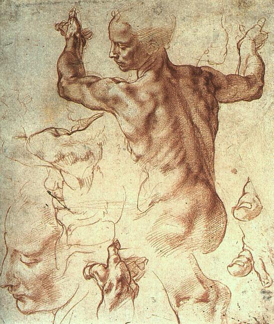 Микеланджело Буонарроти. Либийский сиввил, исследование