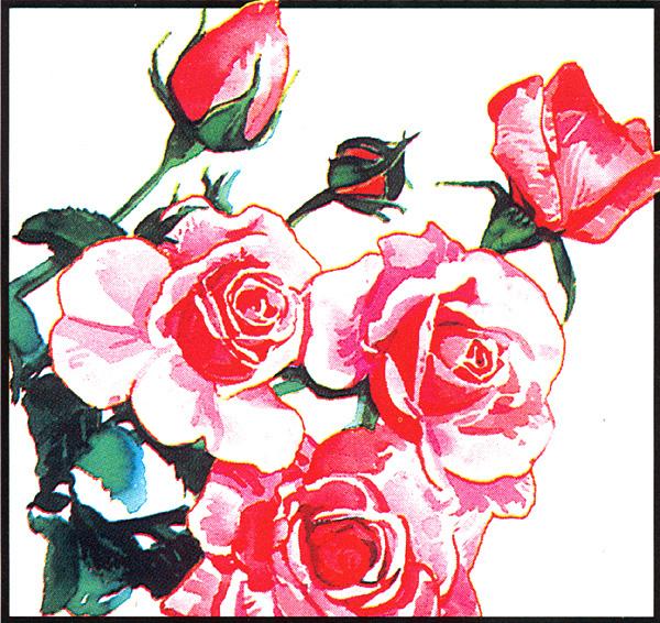 Джон Бакстон. Розы