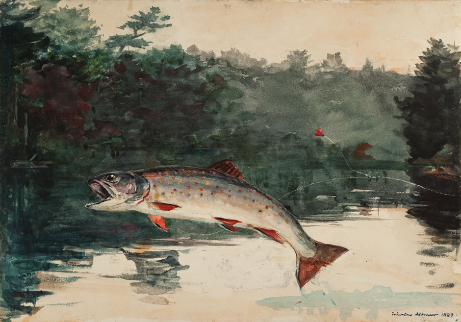 Winslow Homer. Out trout