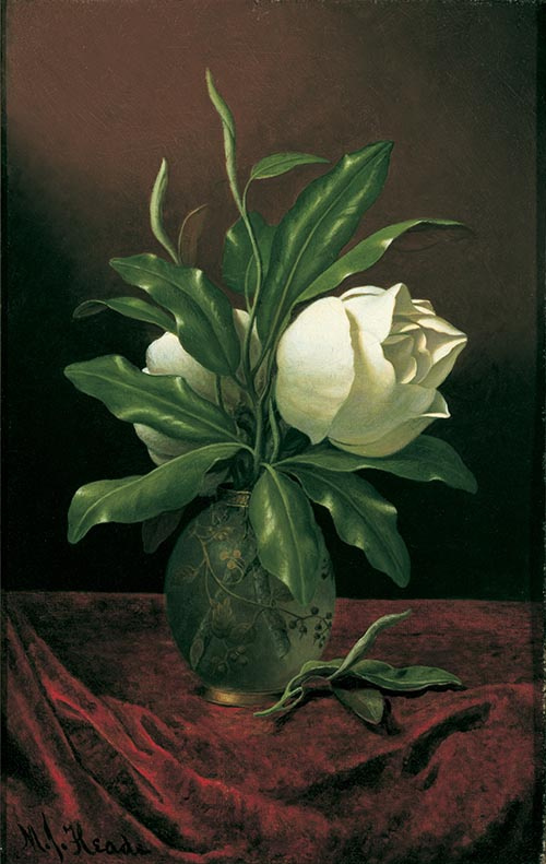 Martin Johnson Head. Two magnolia flowers in a glass vase