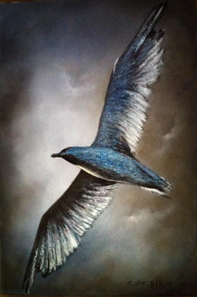 Cristina de biasio. Seagull in flight