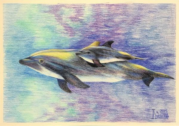 Larissa Lukaneva. Dolphin family