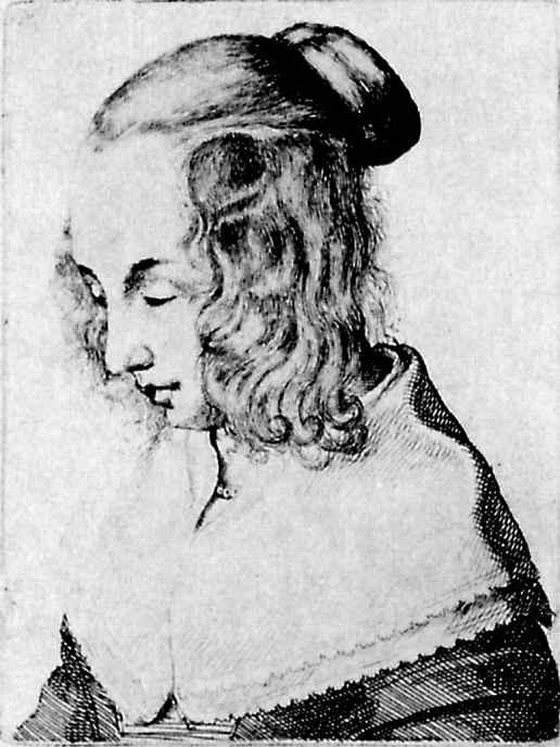Венцель Холлар. Голова женщины
