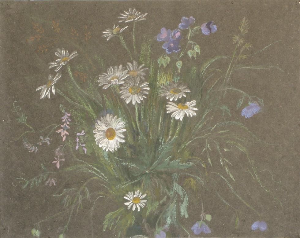 Tks. Game of daisies