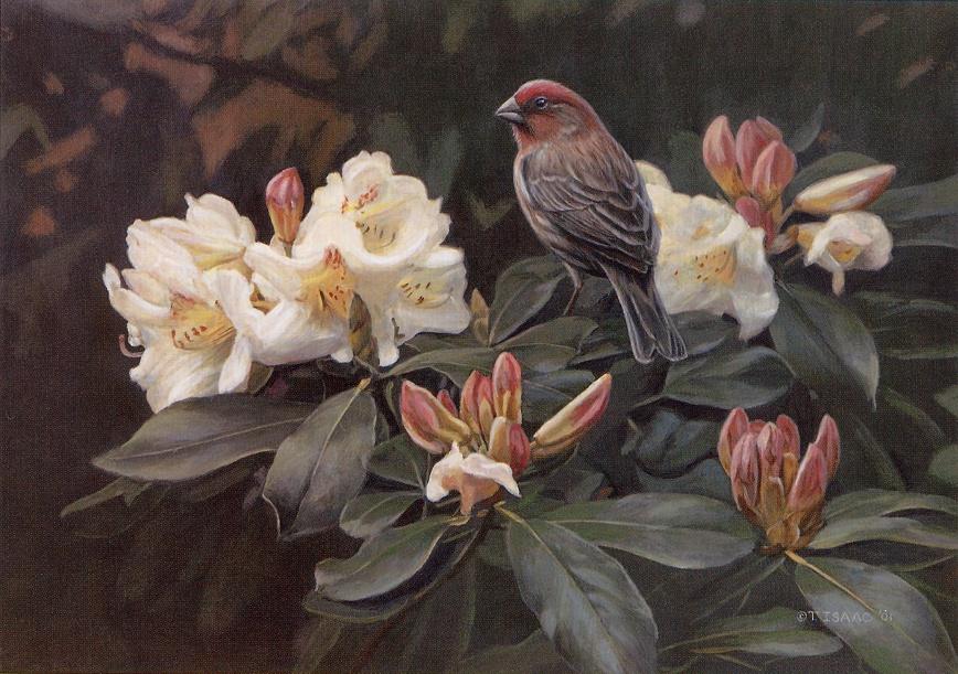 Terry Isaac. Garden