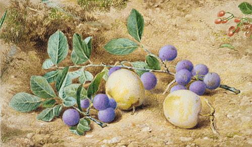 Джон Уильям Хилл. Натюрморт с яблоками и сливами