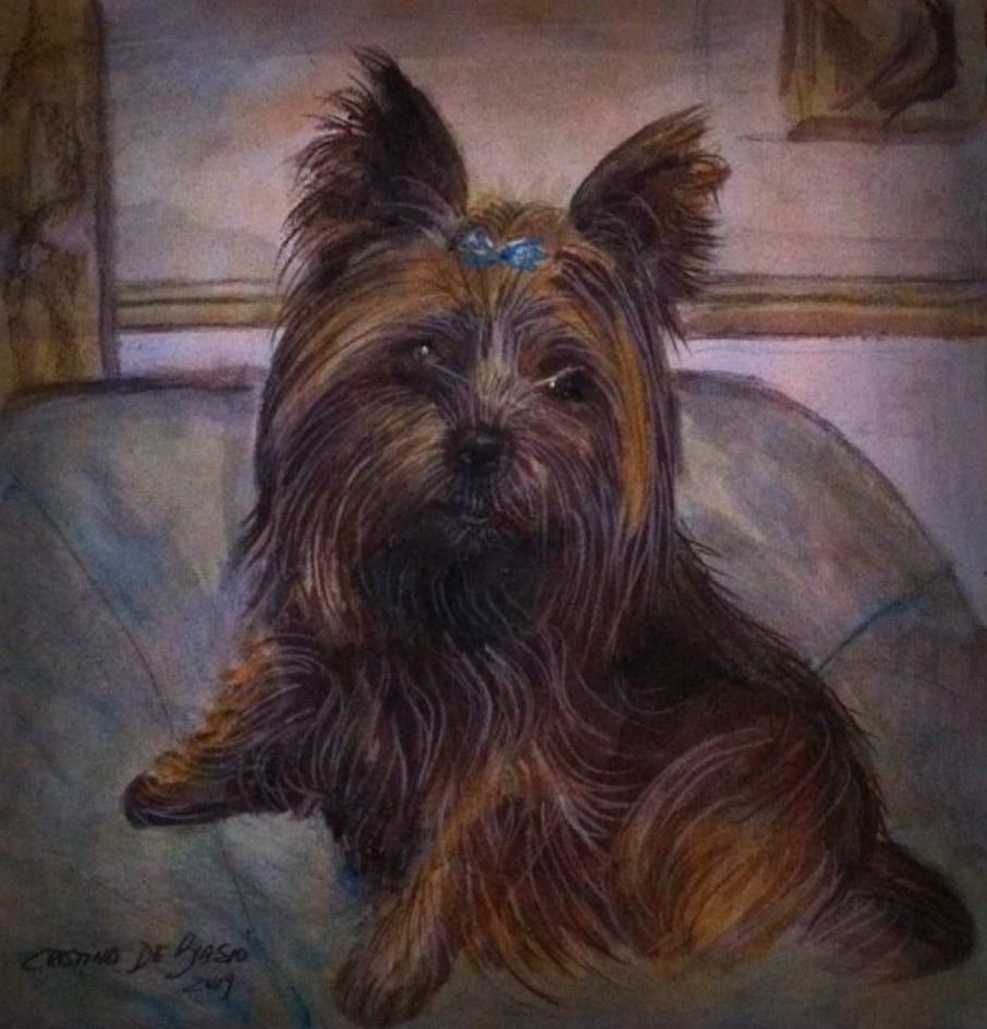 Cristina de biasio. Old doggie