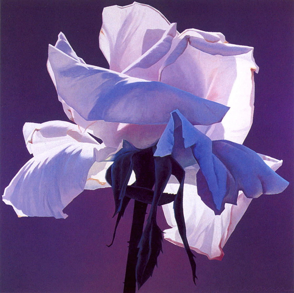 Ed Mell. Lilac rose