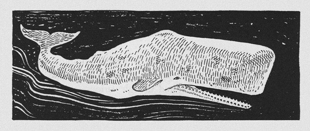an analysis of the topic of the moby dicks biographic of melville Answering the four questions for the moby dick excerpt.