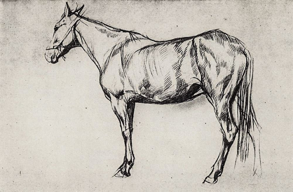 Валентин Александрович Серов. Лошадь