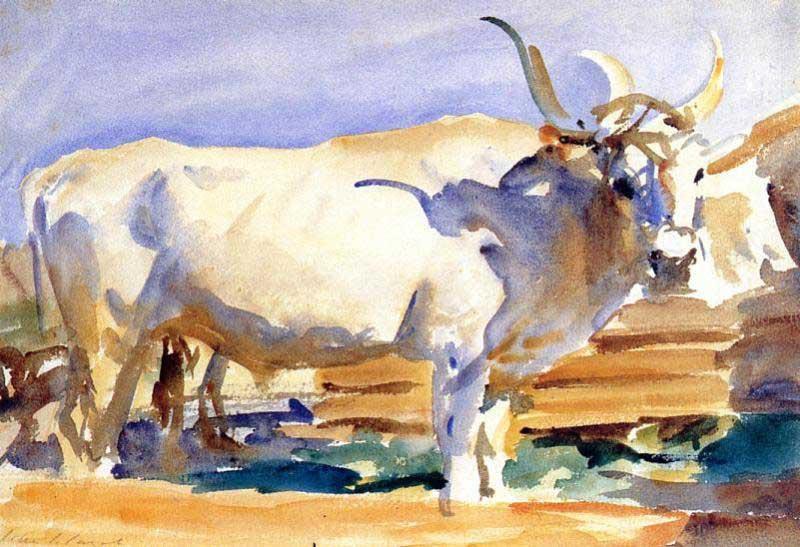 Джон Сингер Сарджент. Белый бык в Сиене