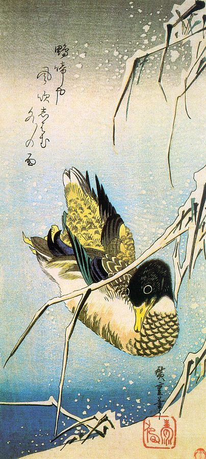the wild duck analysis