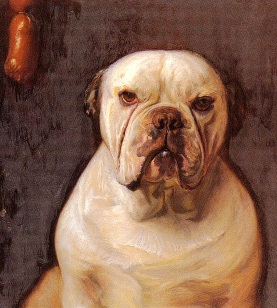 Franz von The Mach. Bulldog