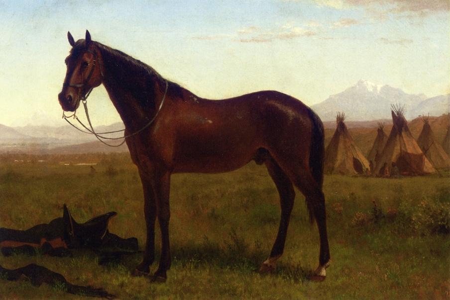 Альберт Бирштадт. Лошадь на фоне индейского поселения