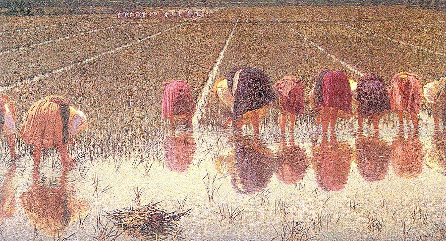 Анджело Мопбелли. Рабочие