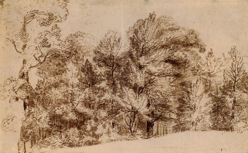 Ян Ливенс. Лесной пейзаж, Дорверт