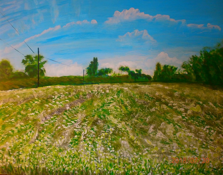 Marianna Dmitrievna Soltuk. View of the field in Nevitsky.