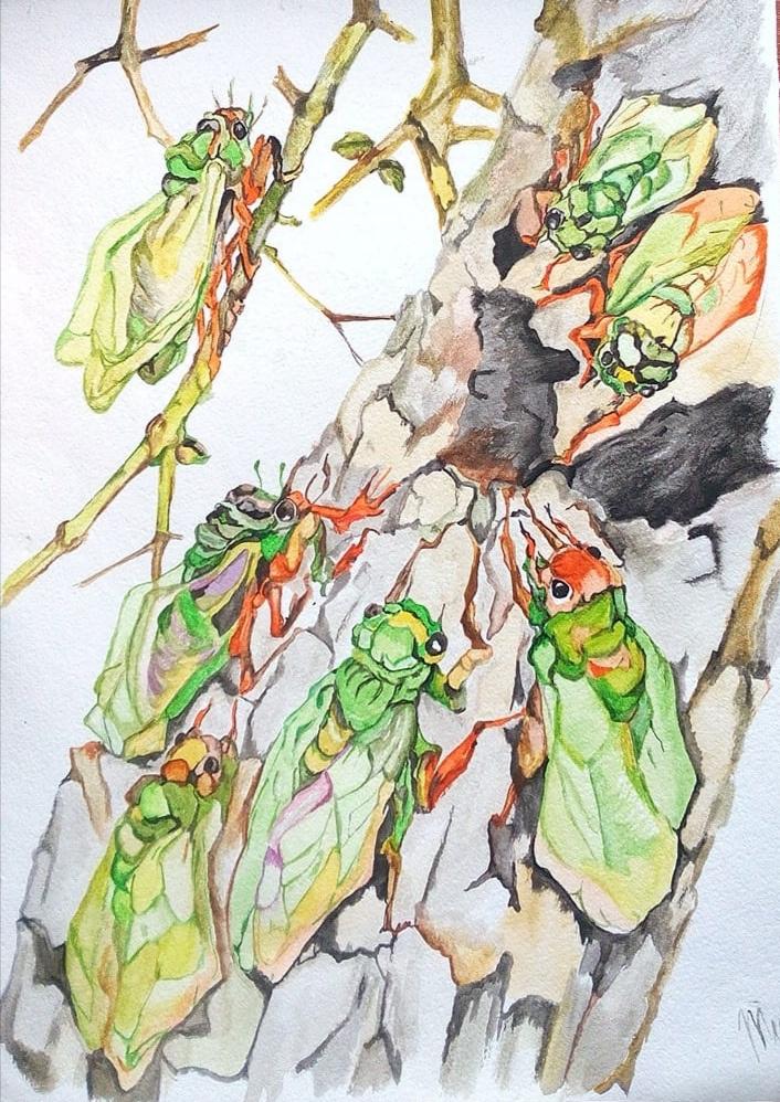 Tatyana Timakova. Green cicadas