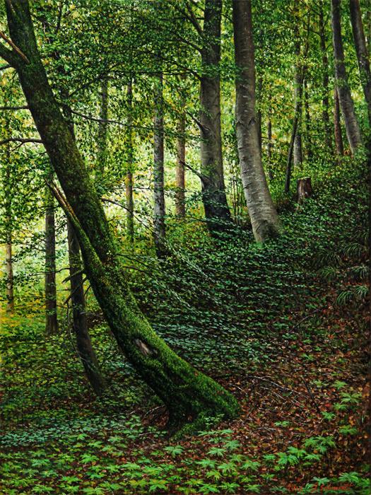 Юрген Шмидт. Deciduous forest near Schongau
