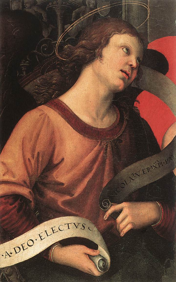 Raphael Santi. Angel (fragment3 of the Baronci Altarpiece)