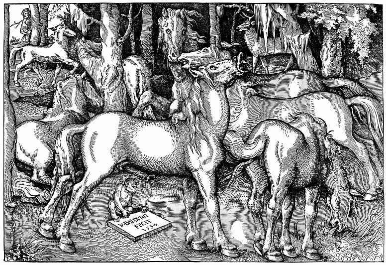 Ханс Бальдунг. Жеребец и кобыла среди диких лошадей в лесу
