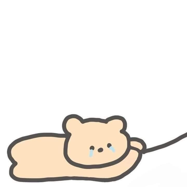 Nguyễn Khoa. Cute Cat