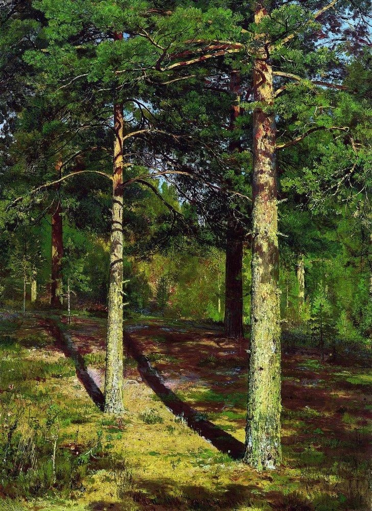 Ivan Shishkin. Pine trees illuminated by the sun